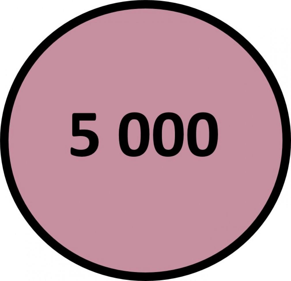 5 000